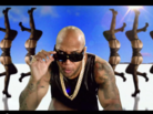 "Flo Rida Feat. Pitbull ""Can't Believe It"" Video"