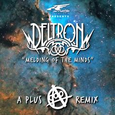 Melding Of The Minds (A-Plus Remix)