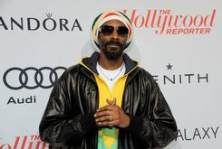 "Stream Snoop Dogg's Collaborative Album With His Sons ""Royal Fam"""