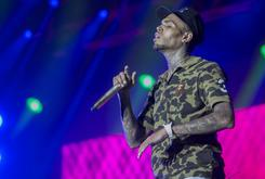 Chris Brown's Security Guard Arrested For Carrying Concealed Weapon