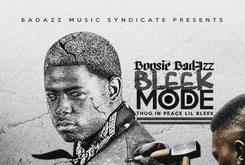 "Stream Boosie Badazz's New Project ""Bleek Mode (Thug In Peace Lil Bleek)"""