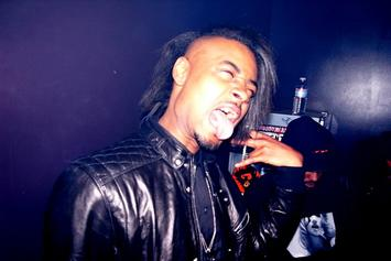 """Danny Brown Reveals Cover Art For """"OLD"""""""