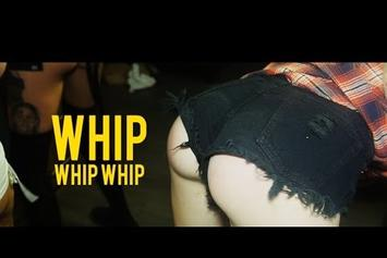 "Royce Rizzy & Andy Milonakis ""Whip Whip Whip"" Video"
