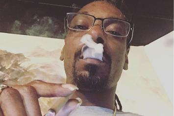 California, Nevada & Massachusetts Legalize Marijuana Amidst Donald Trump Chaos